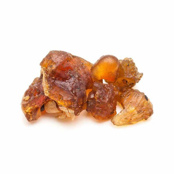Guggul Gum herbal supplement